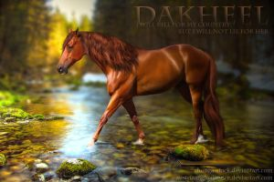 Dakheel - The Secret by HorseWhisperer101