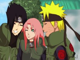 Team 7 by Ovocove