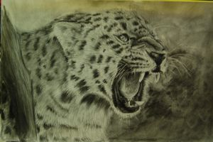 Leopard by Polevaultable