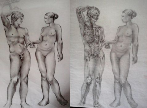 Life Drawing Skeletal Overlay Study by SilverMercury