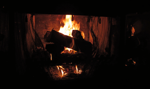Fire and Logs in a Fireplace by TheStockWarehouse