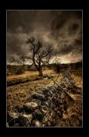 tumbled by theoden06