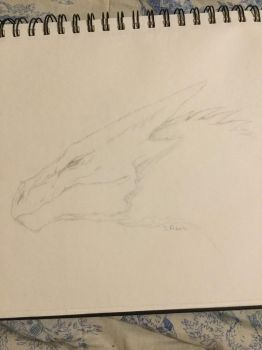 Another dragon by Ravenheart001