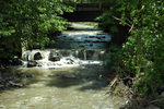 Summer creek in Fort Plain, NY by jackthetab