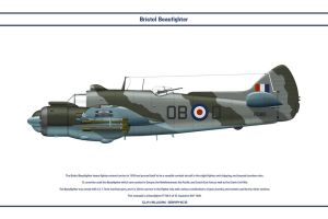 Beaufighter GB 45Sqn 1 by WS-Clave