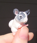 Chinchilla by KingMelissa