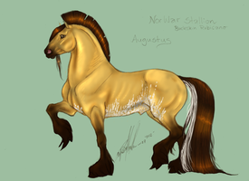 Augustus the NorWar by Carousel-Stables