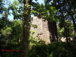 Castle walls in the woods by EvilBohnenkraut