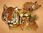 #24 Global Tiger Day by Kaizoku-hime
