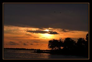 Cedar Key 7-15-09 by LadyAliceofOz