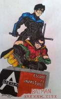 Arkham City-Nightwing and Robin by GabRed-Hat