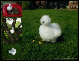 Silkie Chicken Plush (Giveaway) by Meowchee