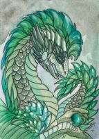 ACEO Dragon 43 by rachaelm5