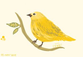 Canary Yellow by vanshands