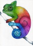 Rainbow Chameleon Color Pencil Drawing by Karen754