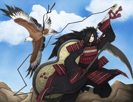 The majestic falconer by FireEagleSpirit