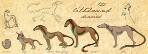 Lithhound Diaries by shelzie