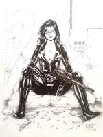 Baroness by Leomatos2014