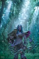 Tyrande Whisperwind - Ashenvale by Narga-Lifestream