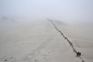 Fence and Fog by mtsofan