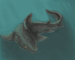 SHARK WEEK 2013 #1 - Spotted Gully by comixqueen