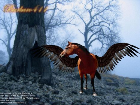 Pegasus In Woods by Barbaro411