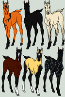 Aphotic Foal Adopts - WINNERS by orengel