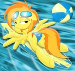 Spitfire on her surfboard..... in a bikini by Spitshy