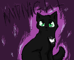 midnight =^.^= by whiteheartwarrior