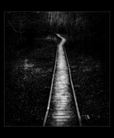 Dark Path by Forestina-Fotos