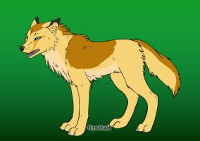 Shira [own wolf character] by lilly-gerbil