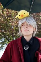 Prussia and his chick by NamekAngelIvy