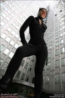Catwoman: Curves by EccentricCasey