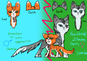 Featherfall and Streakpaw double ref. Sheet by SolarNightengale
