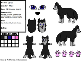 Soren Reference Sheet (NEW) by WolfTwine