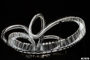 ~ Tiger and Turtle IV ~ by JoJoAsakura