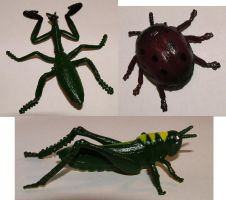 BUGS - Various by JensStockCollection
