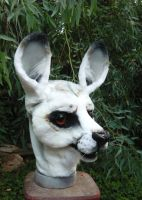 white kangaroo by LilleahWest
