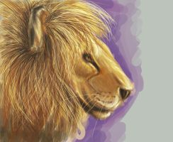 The Lion's Pride by Kreiois