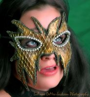 Gold and Black Mask of Mystery by CostumeSalon