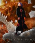 Flight of Konan by tazky