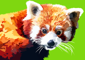 Red panda cute by elviraNL