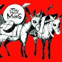 The pack mules by quick2004