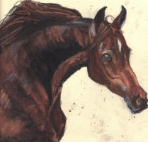 Horse in oil pastel by Mararda