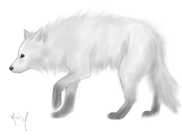 White wolf with blue eyes by Self-Eff4cing
