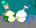 Fox And Krystal bloated by dragovian15