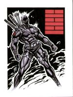 Snake Eyes 9x12 by bukshot