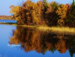 Ripples of Fall by PhotographsByBri