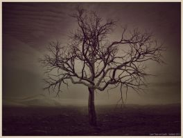 Last Tree on Earth by SATTISH