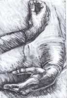 Hands by 8heidi8